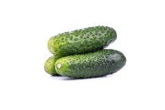 Three cucumber Royalty Free Stock Photos