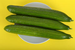 Three Cucumbers on a Plate Stock Image