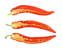 Three cut hot chili peppers isolated on white Royalty Free Stock Photos