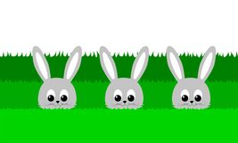 Three cute bunny in the grass - illustration Royalty Free Stock Image