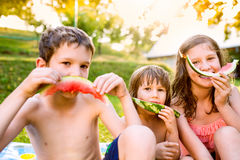 Three cute children eating watermelon in sunny summer garden Royalty Free Stock Image