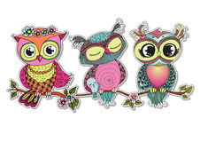 Three Cute colorful cartoon owls sitting on tree branch Stock Image