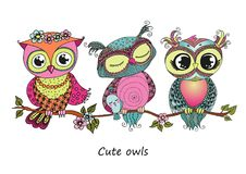 Three cute colorful owls sitting on tree branch Stock Photo