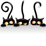 Black Cats Cartoon Naughty and Playful. Three cute and playful Black Kitties, naughty and fun, hidden behind a panel, and looking like waiting someone passing by Stock Photos