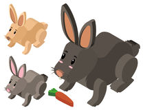 Three cute rabbits in 3D design. Illustration Stock Photography