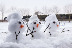 Three cute snowman characters with mohicans Stock Image
