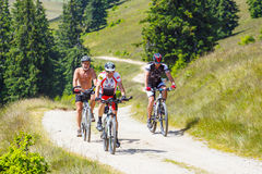 Three cyclists riding mountain bike in sunny day on a mountain road, Romania Royalty Free Stock Photos