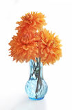 Three dahlias in vase. Three dahlias in blue glass vase Royalty Free Stock Image