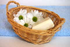 Three Daisies. Three white daisies and a soap in a wicker basket on a blue towel Stock Photo