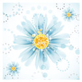 Three daisy flowers. Royalty Free Stock Image