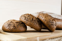 Three dark buns with caraway seeds Stock Images