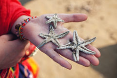 Three dead starfish on a female palm Royalty Free Stock Photo