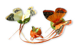 Three decorative butterfly Royalty Free Stock Photo