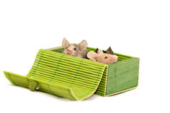 Three decorative mice Royalty Free Stock Images