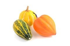 Three decorative mini pumpkins Stock Photo