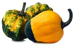 Three Decorative Pumpkins  on White Royalty Free Stock Images