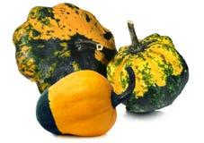 Three Decorative Pumpkins  on White Stock Images