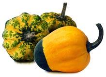 Three Decorative Pumpkins  on White Stock Photography