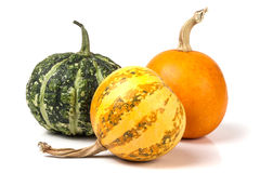 Three decorative pumpkins isolated on white background Stock Image