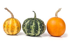 Three decorative pumpkins isolated on white background Royalty Free Stock Photos