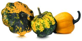 Three Decorative Pumpkins Isolated on White Stock Photo