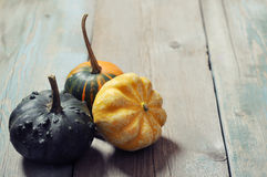 Three decorative pumpkins Royalty Free Stock Photography