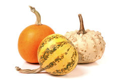 Three decorative pumpkins  on white background Royalty Free Stock Images