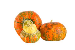 Three decorative pumpkins on white background Stock Image