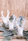 Three deer heads and leafs on wooden background with space for o Stock Photo