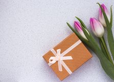 Three delicate pink tulips on white background with gift box and copy space.  royalty free stock image