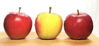 Three delicious eating apples stock image