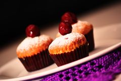 Still life with three delicious cupcakes. Three delicious fresh cupcakes with cherries and powdered sugar on a white plate, close-up Stock Photos