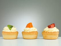 Three delicious tarts Stock Images