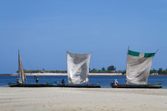 Three dhows on the shore Royalty Free Stock Images