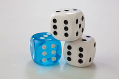 Three dice. Studio shot of three dice on a white surface Stock Image