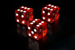 Three Dices with reflection Stock Photos
