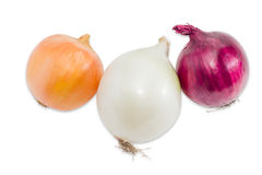 Three different bulbs onion on a light background Royalty Free Stock Photography