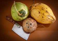 Three different coconuts with machete. On table top view Royalty Free Stock Photo