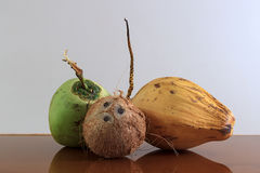 Three different coconuts on table Royalty Free Stock Images