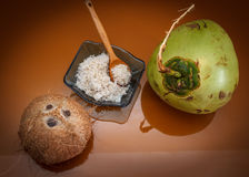 Three different coconuts Royalty Free Stock Image