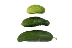 Three different cucumbers Stock Images