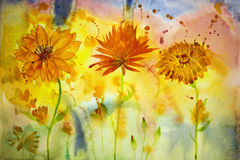 Three different marigolds. Watercolor painting. Stock Photography