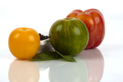 Three different organic tomatoes Royalty Free Stock Photo