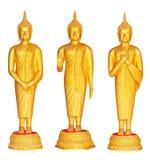 Three different posture golden Buddha statue Stock Image