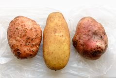 Three Different Potatoes royalty free stock image