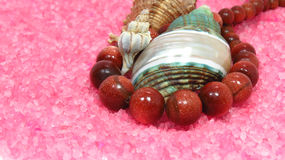 Three different sea shells on pink and Tiger's eye Stock Images