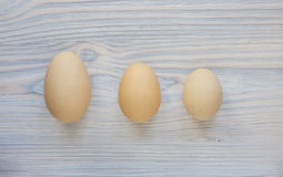 Three different size eggs- size matters Royalty Free Stock Image