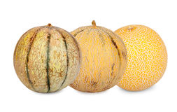 Three different sorts Galia Melons Royalty Free Stock Photography