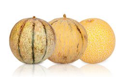 Three different sorts Galia Melons mirrored Stock Images