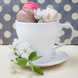 Three different sweet and colourful french macaroons in cup and Stock Photography